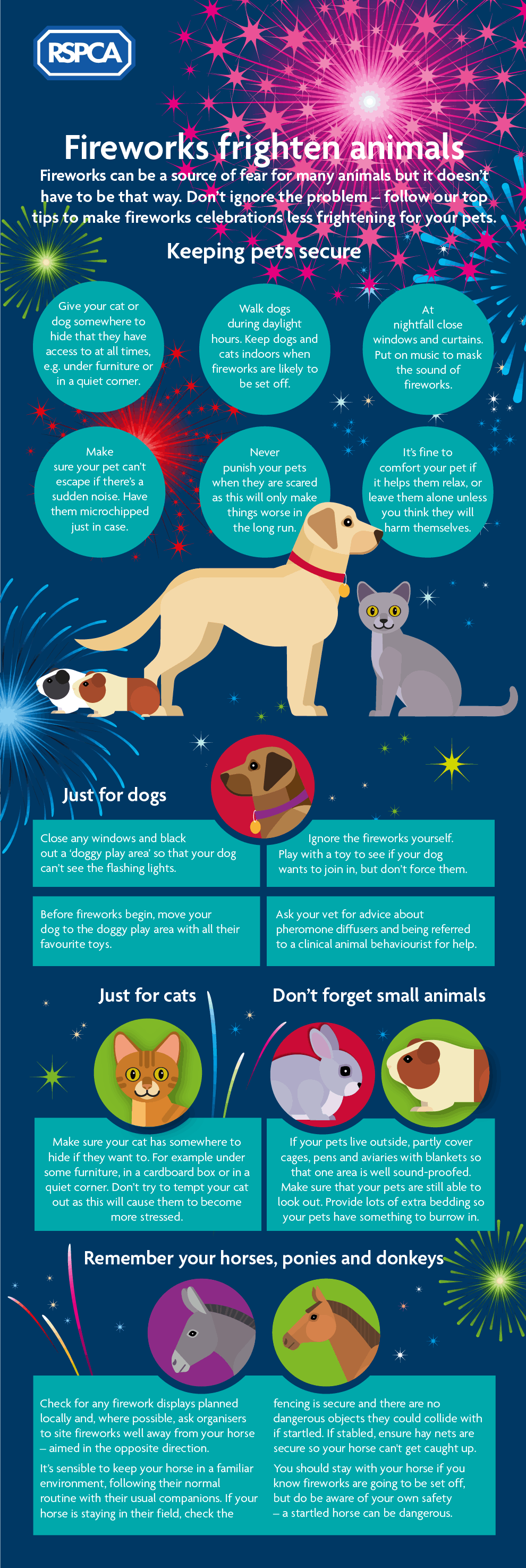 New Year's Eve Fireworks Safety